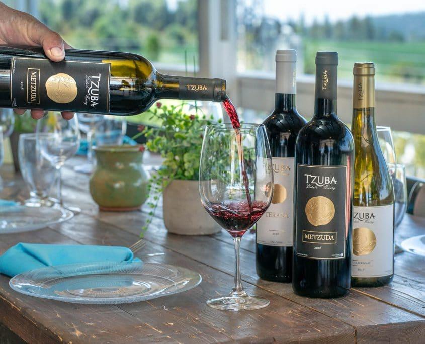 יין ובראנץ5